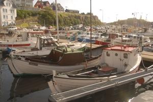 Faroe020