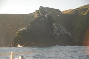 Shetlands006
