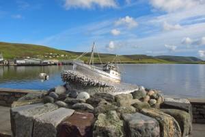 Shetlands015