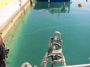 Floating mooring line