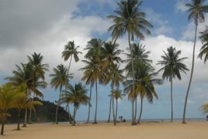 Trinidad at last