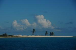 Bird Islands