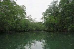 Rio Cacique