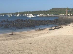Wreck Bay