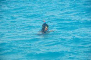 Beveridge Reef
