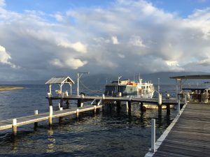 Papua New Guinea interlude