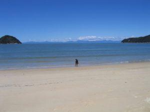Abel Tasman Park images