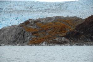 Iceberg025