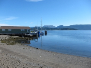 WoodyPoint012