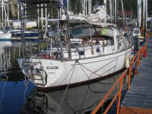 Montt065