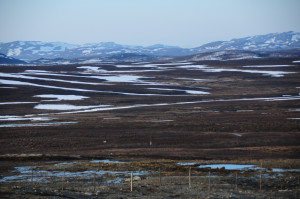 High plains south of Honningsvag