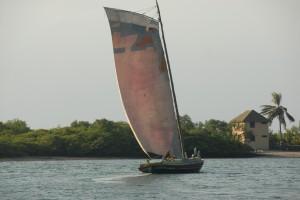 Bahia046