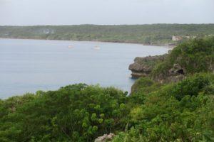 Niue etc85